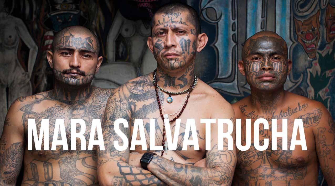 Mara Salvatrucha_